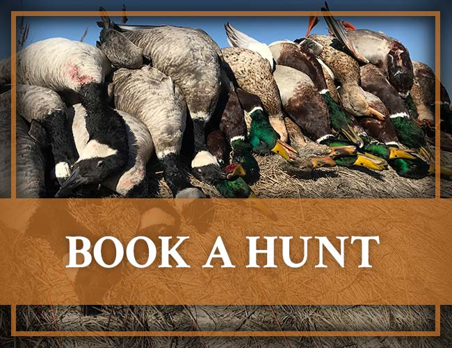 Book a Hunt with Banded Gandr Outfitters