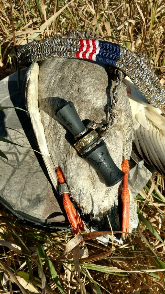 Waterfowl Hunting Dates & Rates