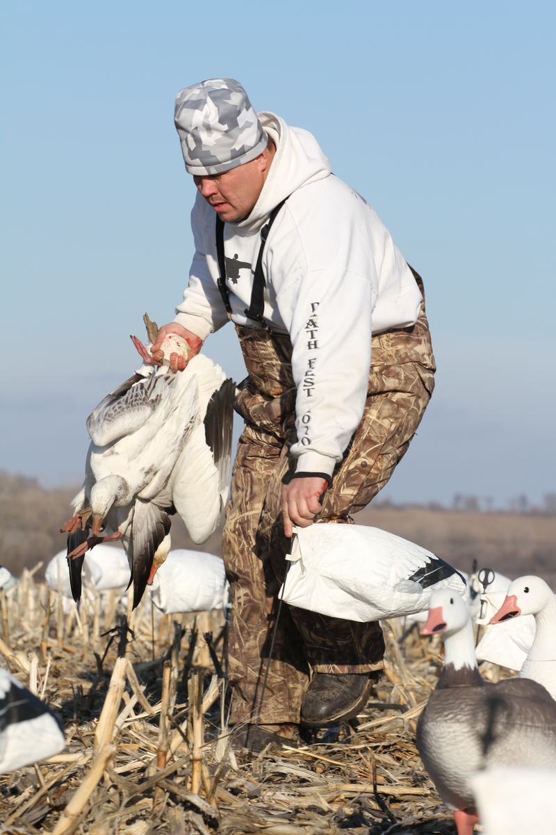 Missouri Snow Goose Hunts